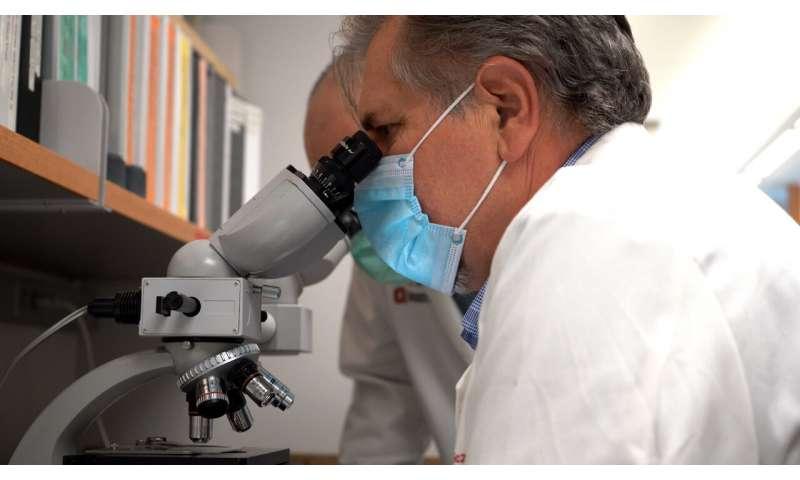 """Innowacyjna terapia genowa """"przeprogramowuje"""" komórki, aby odwrócić niedobory neurologiczne"""