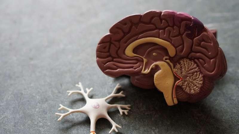Mašininis mokymasis gali nustatyti Alzheimerio ligos požymius pacientams, prisimenantiems Pelenės istoriją