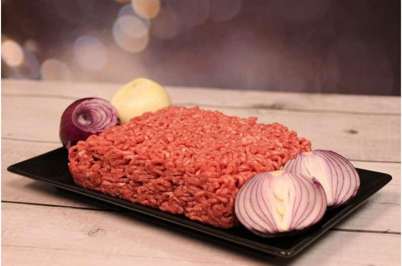 carne de hambúrguer crua