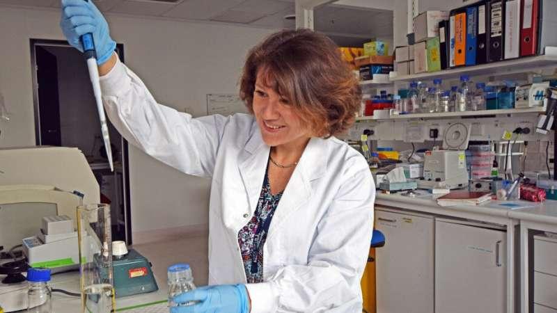 O regulador de DNA oferece uma nova esperança para o tratamento do linfoma de Hodgkin
