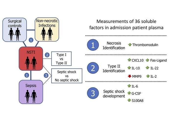 Biomarkera të reja për infeksionet e indeve të buta kërcënuese për jetën