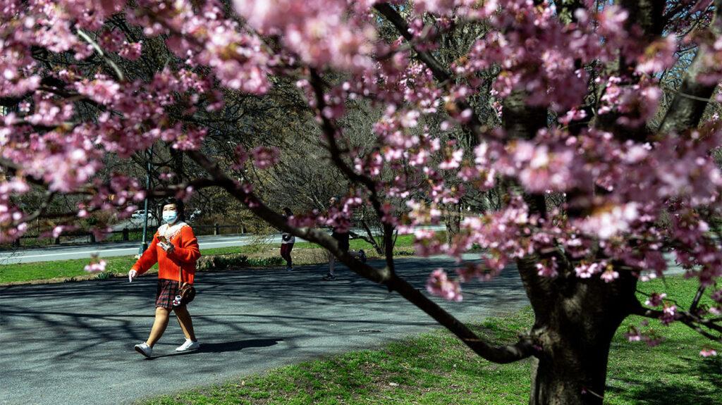 Κάποιος φοράει μάσκα προσώπου περπατώντας μέσα σε δημόσιο πάρκο